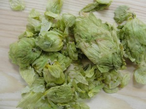 Hops are among the homebrew supplies found at Barley's Homebrewing Supplies on East Columbia St. Photo: Curtis Van Marck.