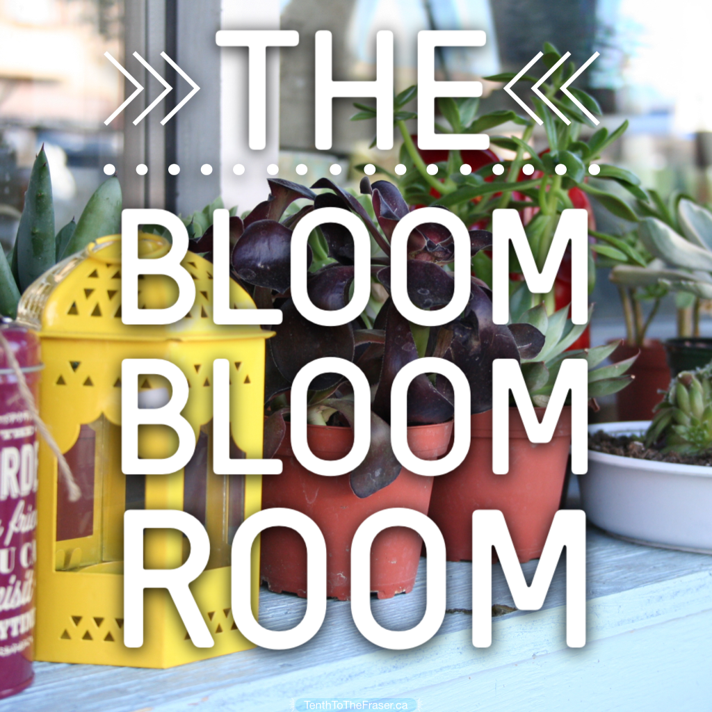 The Bloom Bloom Room