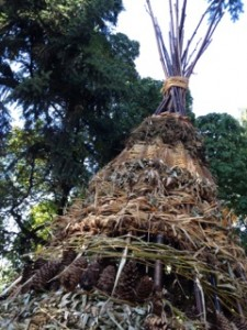 Natural materials were woven to create this teepee structure in Moody Park. Eventually it will succumb to natural processes of decay.